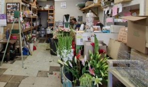 Florist in Koreatown, Olympic