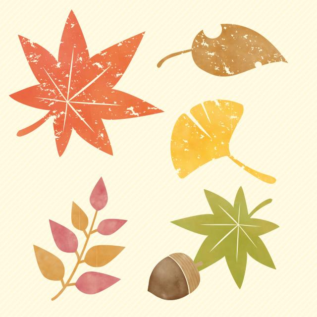 弥彦公園の紅葉の見ごろはライブカメラで!もみじ谷や弥彦神社の紅葉も!
