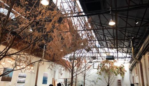 【ソンス】作家のアート作品を眺めながら見れる『大林倉庫(デリムチャンコ)ギャラリー・コラム』