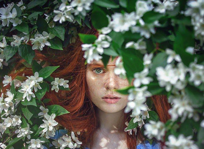 Flores - Malena