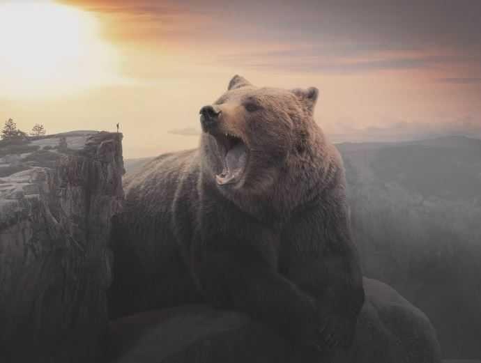 Дух медведя.