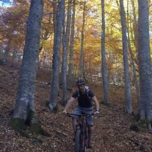 Mountain bike – Καταφύγιο Κορομηλιά