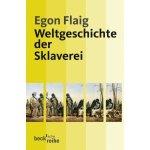 Egon Flaig, Weltgeschichte der Sklaverei, Buchcover