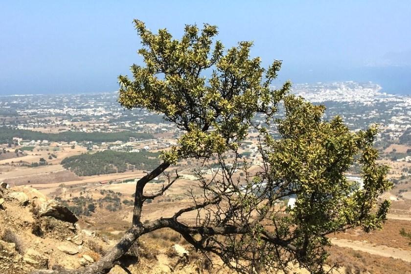 Aussicht vom Bergkamm Richtung Zia