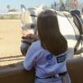 Pferde streicheln an der Koppel am Stall