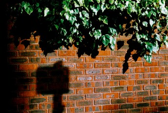 bricks_shadow_web