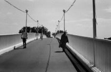 bridge_web