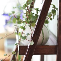 Blumenetagere selbst bauen (Zusammenfassung)