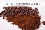 捨てていたコーヒーかすが肥料に大変身? 具体的な作り方を伝授します。
