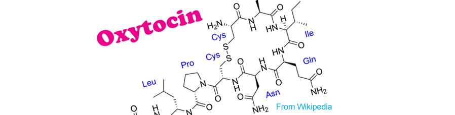 オキシトシン-科学式