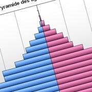 人口比率グラフ