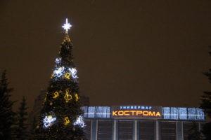 Новый год Кострома