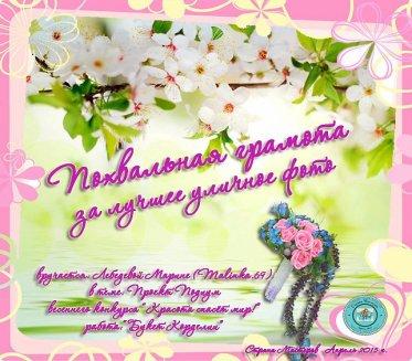 281573_pohv-gram_-za_ulichnoe_foto