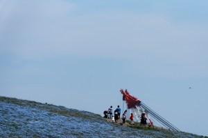 ひたち海浜公園のネモフィラと茨城港のクレーン