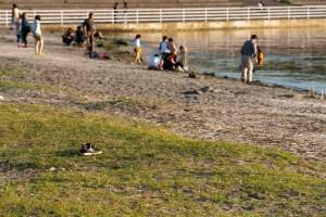 千葉ポートタワーの砂浜