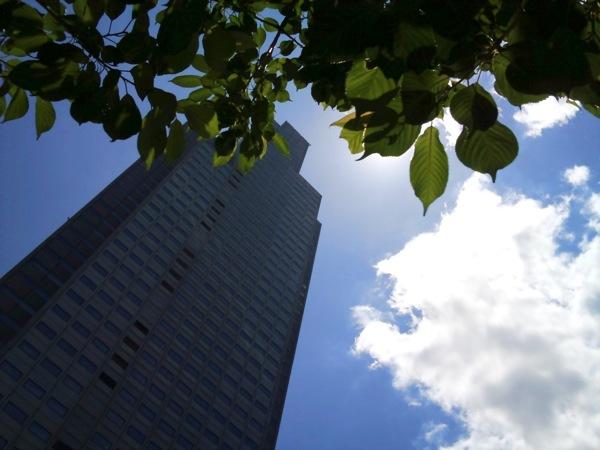 聖路加タワーと青空と雲と葉っぱ