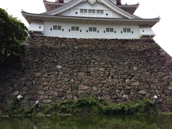 除草作業中の小倉城