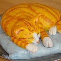 Идеи для тортов с котиками