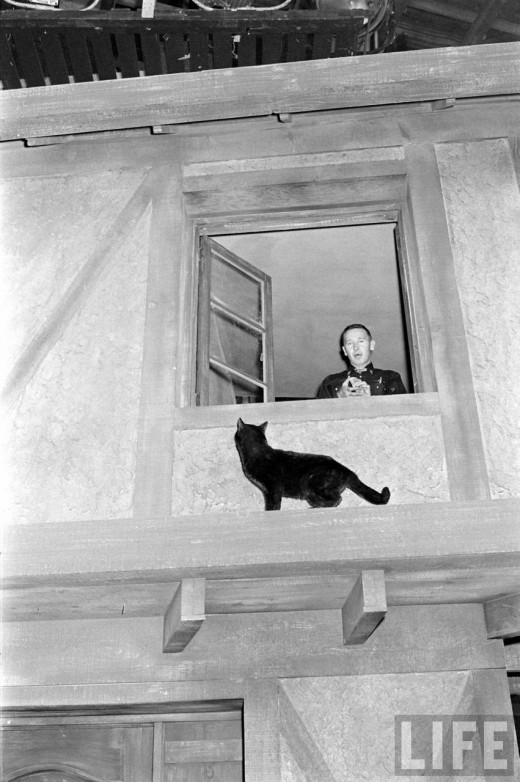 Black Cat Auditions In Hollywood, 1961 (18)
