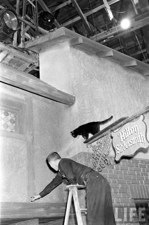 Black Cat Auditions In Hollywood, 1961 (19)
