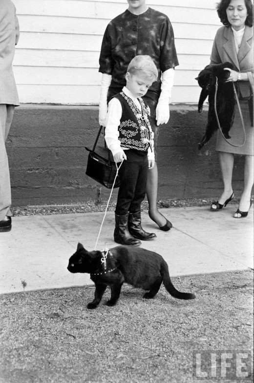 Black Cat Auditions In Hollywood, 1961 (6)
