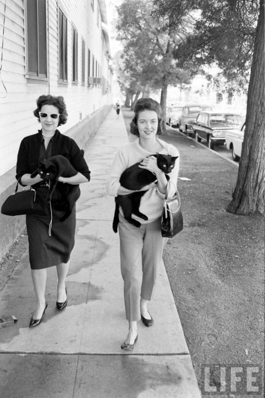Black Cat Auditions In Hollywood, 1961 (9)