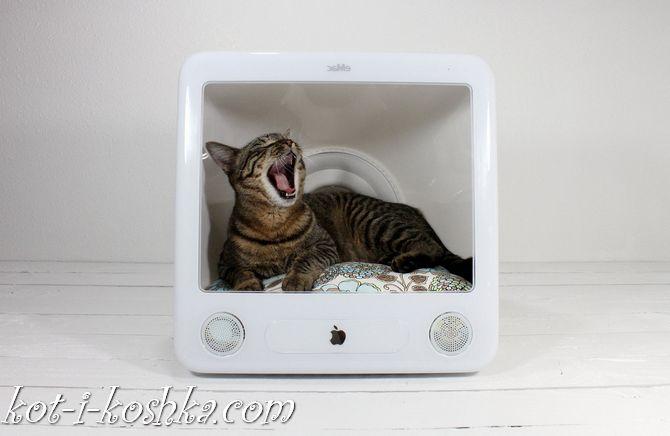 домик для кота (1)