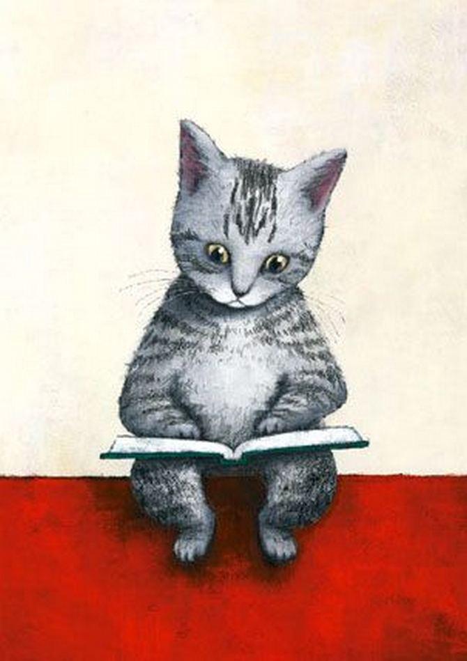 читающий кот (15)