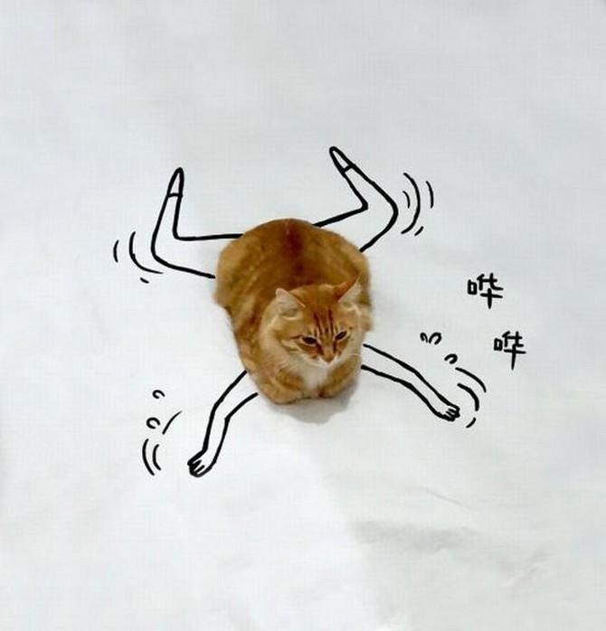 дорисуй кота (9)