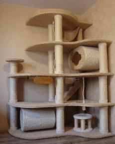 Feline Complex de jocuri
