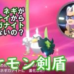 ポケモン剣盾プレイ日記 #10『ネギがナイからネギガナイト』