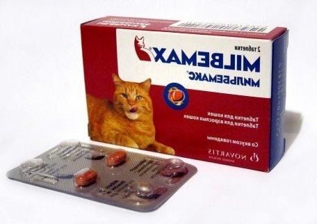 Для избежание интоксикации организма продуктами жизнедеятельности глистов, давайте антигельминтные препараты