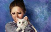 Сидя на руках, кошки ждут от нас ласки и заботы