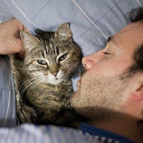 Некоторые хозяева предпочитают спать в обнимку со своим четвероногим другом