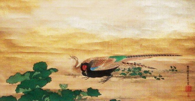狩野永岳「雉子と時鳥図 のうち雉子」山種美術館所蔵