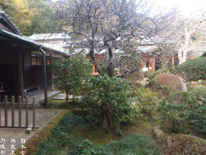 壽福寺 境内