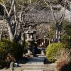 明王院 十二所 将軍のかたみの寺は、 護摩祈祷で人気!アクセスデータつき。