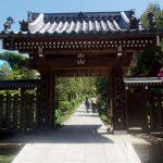 建長寺 西来庵 いつもは入れない修行道場で、5月初めに牡丹を公開、アクセスデータ付き。