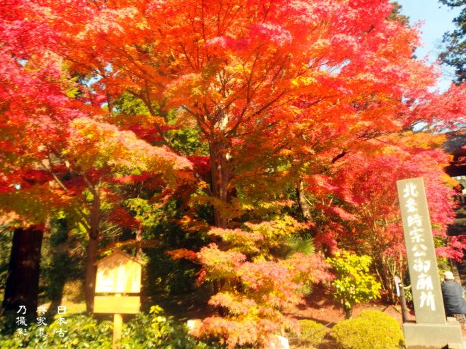 円覚寺門前の紅葉