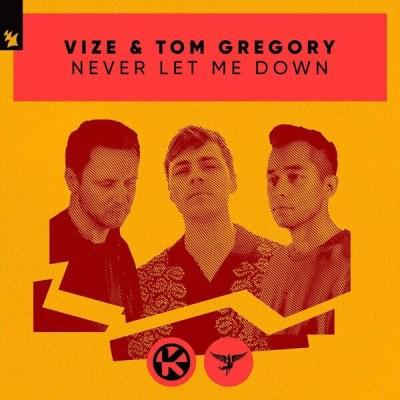 VIZE & Tom Gregory - Never Let Me Down Lyrics