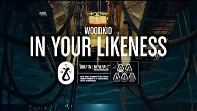 Photo of Woodkid – In Your Likeness lyrics