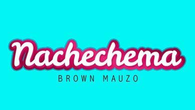Photo of BROWN MAUZO – Nachechema Lyrics