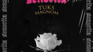 Photo of Magnom – Senorita Ft Tuks