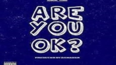 Photo of Shatta Wale – Are You Ok