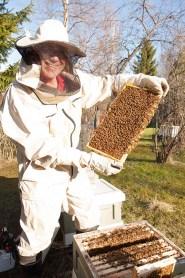 Erkki Mujunen nauttii harrastuksestaan ja luonnon tarkkailusta. Kesällä mehiläispesät on tarkastettava kahdeksan päivän välein, joten pitkille reissuille ei ole lähtemistä.