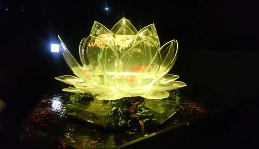 日本橋・アートアクアリウム 金魚が織りなす幻想的な空間