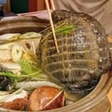 スッポン1匹が丸ごと入った鍋はど迫力!月島・源平