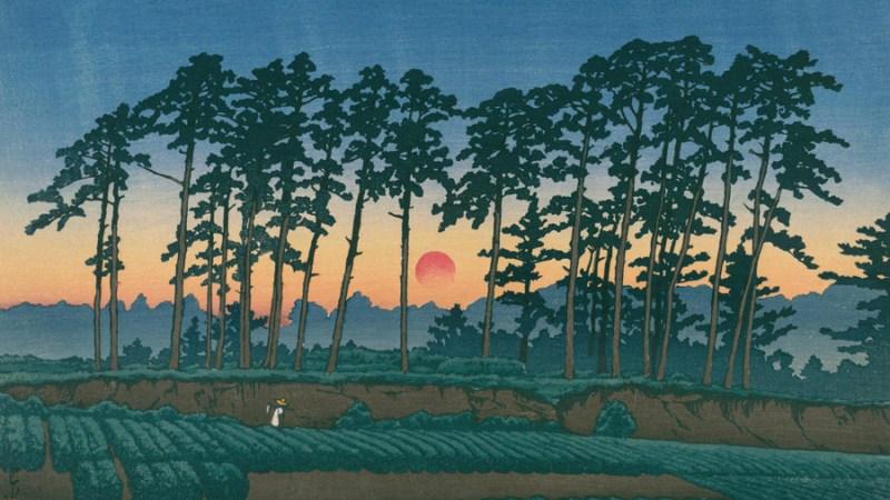 Terrenos abandonados aumenta no Japão por falta de pessoas | EP21 – Kotobá Nihongo Podcast