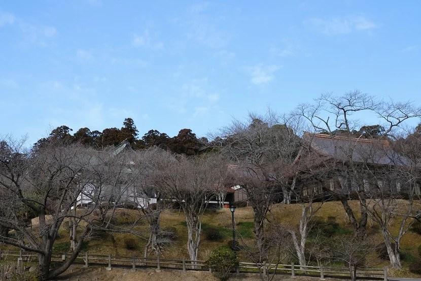 塩釜神社の2月の風景写真