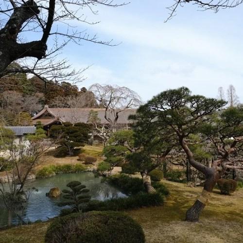 塩釜神社の春の風景写真
